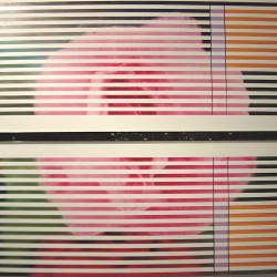 Ernesto Jannini, Rosa allenatissima, 2007, hardware e olio su tavola, 198x173 cm