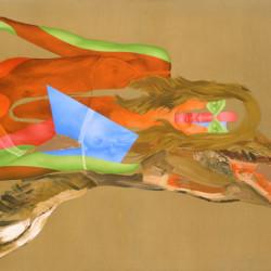 Hagal, 2005, olio su tela organica, cm 135 x 200