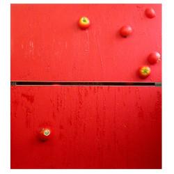 Ernesto Jannini, Migrazioni nostalgiche, 2006, similfrutta, hardware e pigmenti su tavola, 91x85 cm