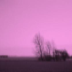 Medium Color Landscapes