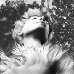 A perfect love, 2006, fotopittura digitale sotto plexiglass, cm 85 x 77