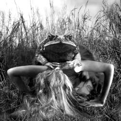 A perfect love, 2006, fotopittura digitale sotto plexiglass, cm 85 x 86