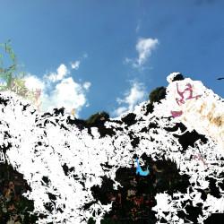 Forest, 2014, matite colorate, pennarello, acrilico su foto, digitalizzata e stampata su plexiglas trasparente, 50x67x0,8 cm