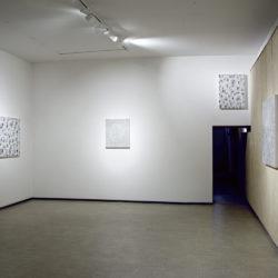 Andrea Bianconi, veduta della sala